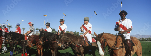 Polo team on horseback in field