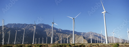 Valley of wind turbines in desert