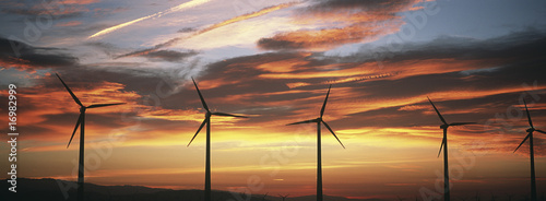 Silhouettes of wind turbines at sunset