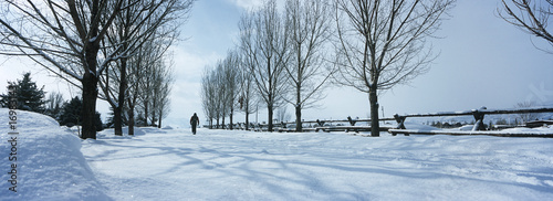 Person walking in snow between trees