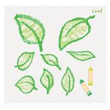 Fototapety クレヨンで描いた葉っぱ