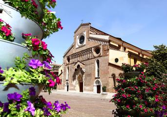 Duomo di Udine (6)