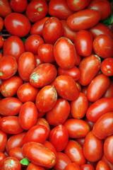 Pomodori4827