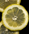 3 Lemon Slices on Black background