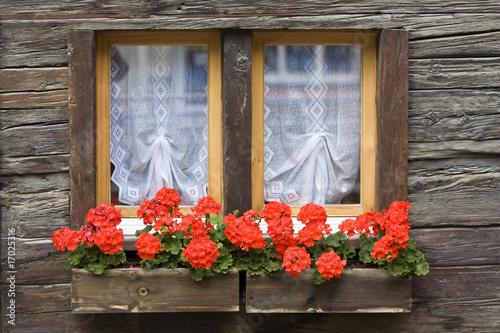 Fenster mit Blumenkasten