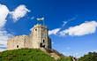 Cardiff Castle - 17027198