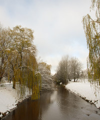 Bach im Winter
