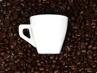 White empty cup of coffee on coffee beans background