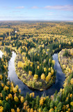 The River zigzags in forest. poster