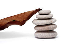 Blad en steen