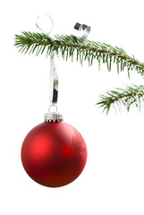 Christmas tree bauble on pine tree branch