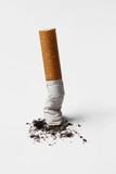 extinct cigarette isolated on white background. poster