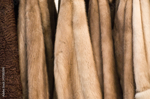 Real Fur coats