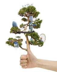 Magic artificial Tree with city placed on it