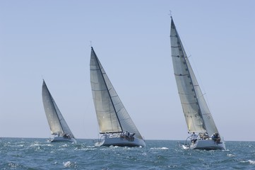 Three yachts compete in team sailing event, California