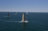 Four yachts compete in team sailing event, California