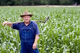 Retired Man (Farmer) in the corn fields poster