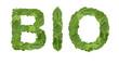 mot bio feuilles vertes