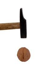 martello e noce