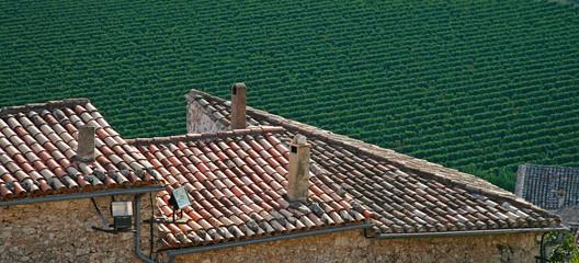 vignes et toits en tuiles d'un village
