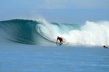 Surfer doing bottom turn, Mentawai Islands, Indonesia