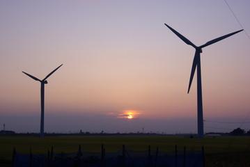 夕陽に照らされる風車たち