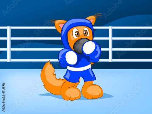 boxing squirrel