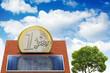 Maison photovoltaique pièce euro