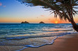 Pacific sunrise at Lanikai beach, Hawaii - 17159357