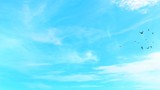 1080p CGI sky with white clouds and birds flight poster