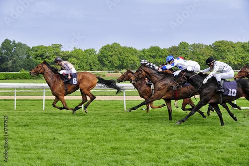 Plexiglas Paardrijden rennbahn