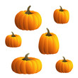 Vector Pumpkins Set