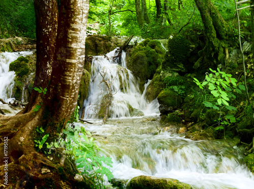 waterfall in deep forest - 17195152