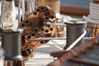poulie de voilier ancien en cuivre