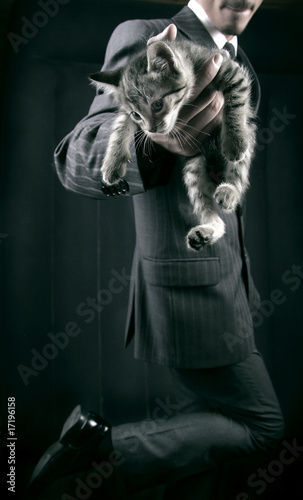 businessman in grey suit and striped kitten in his hands. Ñlose-