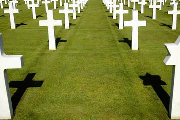 Crosses in Normandy war cemetery