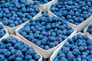 Blueberrie in Baskets