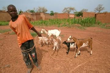 jeune berger du Burkina Faso