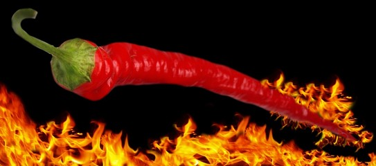 Flaming chili pepper on flaming background
