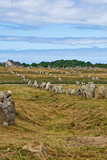 Prehistoric menhirs alignment in Carnac, Brittany, France poster