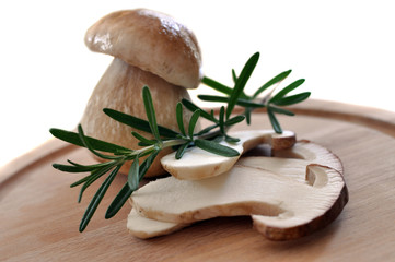 Sliced Porcini and Rosemary