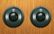 speakers on a wooden background