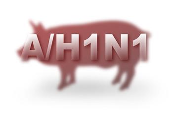 Influenza suina A/H1N1