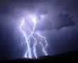 Tucson Lightning - 17265528