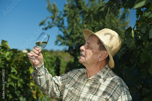 Senior vintner trying wine