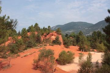Colorado provenzale