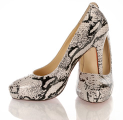 womens high heel python shoes on white background ..