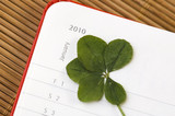 Five Leaf Clover  and New Year. January 2010. poster