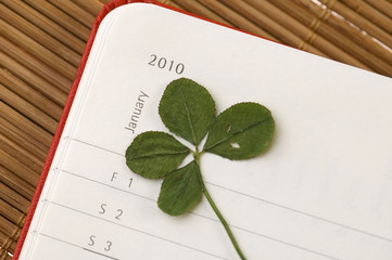 Four Leaf Clover  and New Year. January 2010.