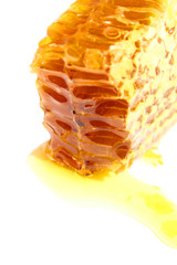 isolated close-up honeycomb